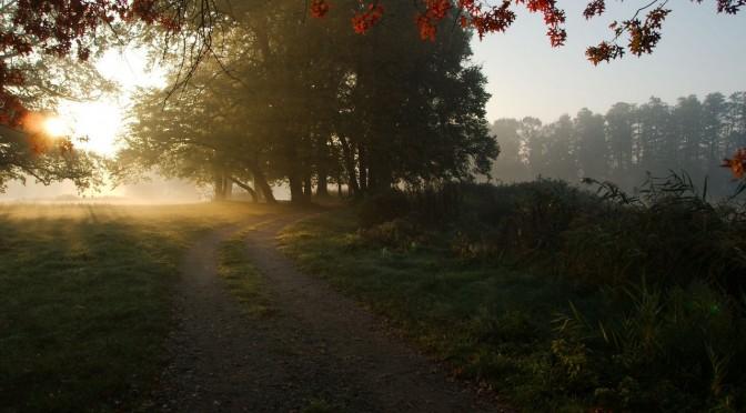 Wschód słońca – Szczodre, okolice Wrocławia